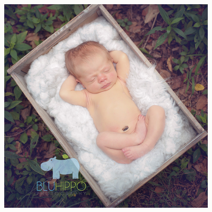 Pittsburgh Newborn Photography