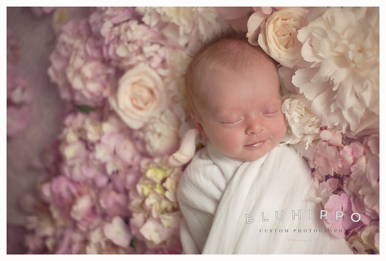 Pittsburgh lifestyle baby photographer pittsburgh lifestyle baby photographer
