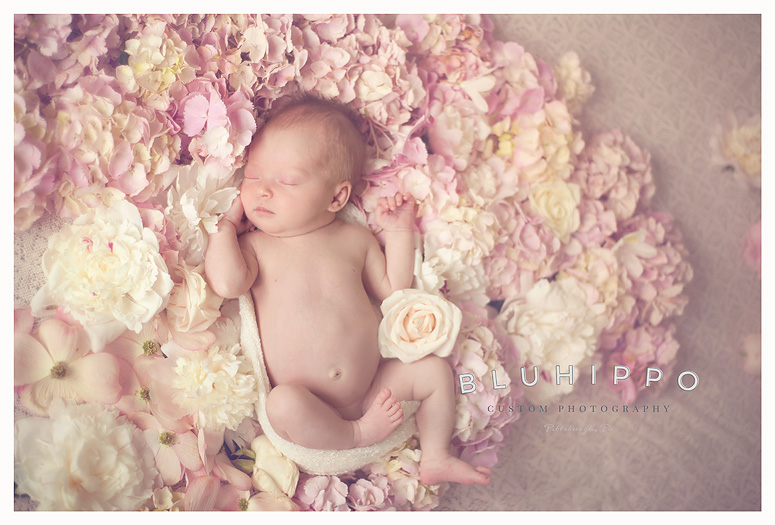 Pittsburgh lifestyle baby photographer
