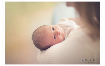 Lifestyle Newborn Photography Pittsburgh PA
